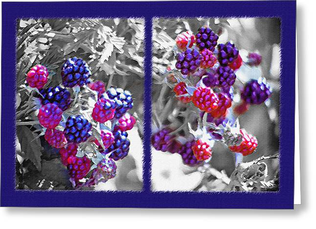 Wild Berries Diptych Greeting Card by Steve Ohlsen