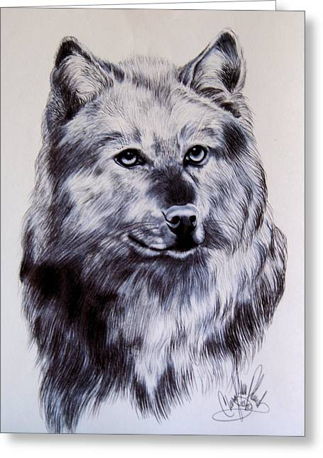 Bred Drawings Greeting Cards - Wild Canines Greeting Card by Cheryl Poland