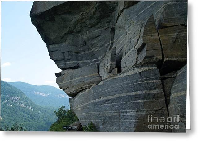 Chimney Rock North Carolina Greeting Cards - Wild Cat Trap at Chimney Rock NC Greeting Card by Anna Lisa Yoder