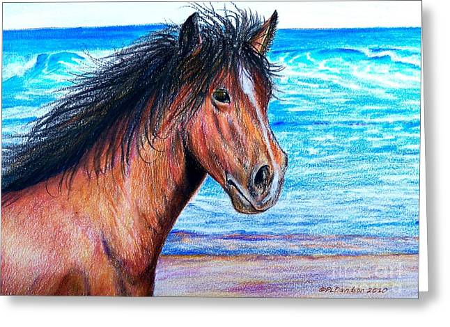 On The Beach Pastels Greeting Cards - Wild Horse On The Beach Greeting Card by Patricia L Davidson