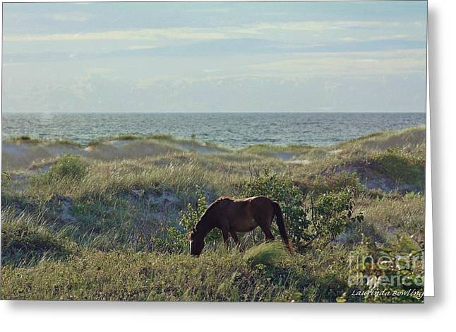 Wild Mustang Greeting Card by Laurinda Bowling