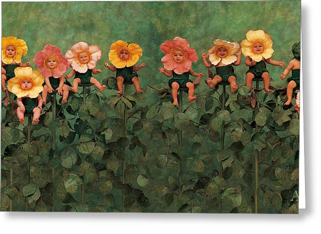 Roses Greeting Cards - Wild Roses Greeting Card by Anne Geddes