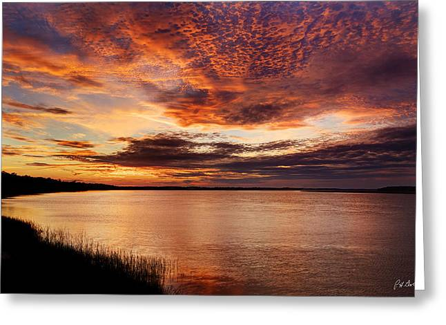 Beaufort County Greeting Cards - Wild Sky Greeting Card by Phill  Doherty