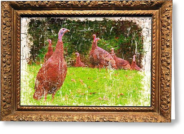 Meleagris Gallopavo Greeting Cards - Wild Turkey - 1 Greeting Card by Larry Mulvehill