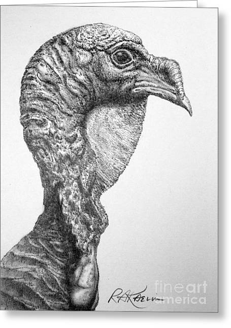 Kaelin Drawings Greeting Cards - Wild Turkey Greeting Card by Roy Kaelin