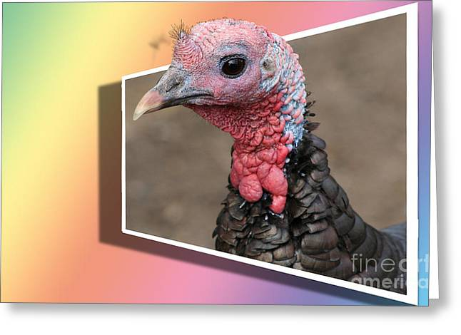 Out Of Frame Greeting Cards - Wild Turkey Greeting Card by Teresa Zieba
