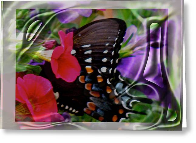 Wild Wings Butterfly Greeting Card by Debra     Vatalaro