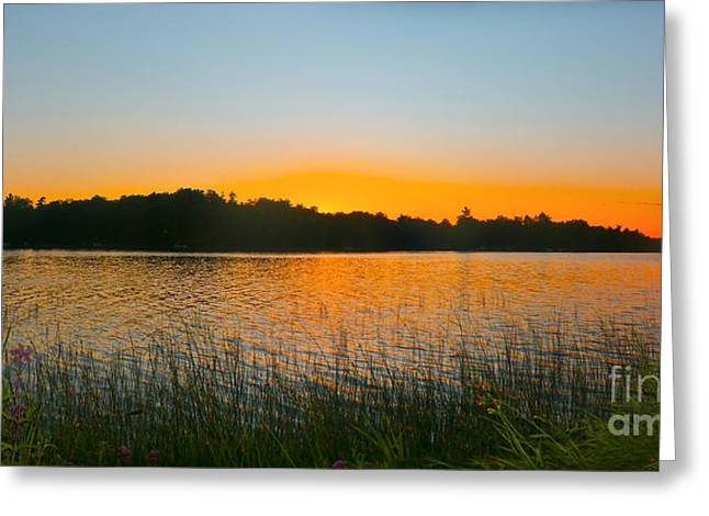 Camelot Greeting Cards - Wilderness Point sunset panorama Greeting Card by Gary Eason
