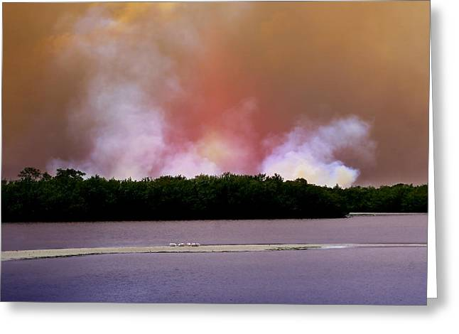 Forest Fire Greeting Cards - Wildfire on Sanibel Island Greeting Card by Ellen Heaverlo