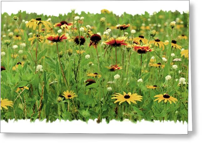Corn Paintings Greeting Cards - Wildflower Meadow Greeting Card by JQ Licensing