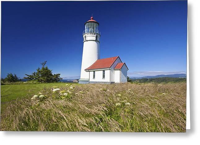 Oregon Lighthouse Image Greeting Cards - Wildflowers And Cape Blanco Lighthouse Greeting Card by Craig Tuttle