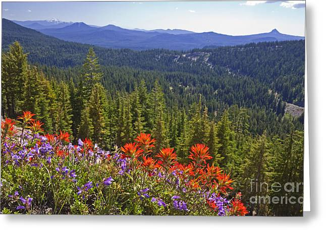 Crater Lake View Greeting Cards - Wildflowers and Mountaintop View Greeting Card by Ellen Thane and Photo Researchers