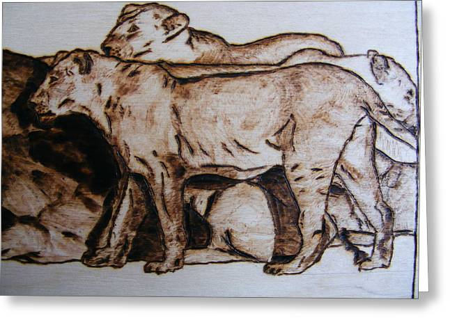 Lions Pyrography Greeting Cards - wildlife AFRICA-wood pyrography Greeting Card by Egri George-Christian