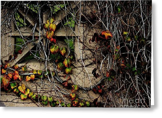 Wildomar Cemetery Wall - 03 Greeting Card by Lawrence Costales