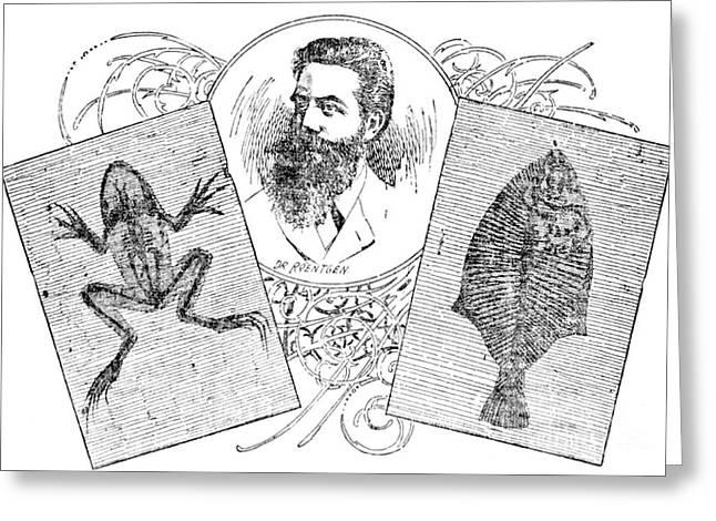 Nobel Winner Greeting Cards - Wilhelm Konrad Roentgen, German Greeting Card by Science Source