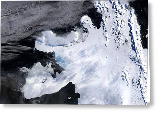 Rising Sea Level Greeting Cards - Wilkens Ice Shelf, 3 Of 4 Greeting Card by Nasa