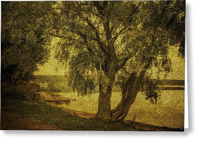 Willow Lake Greeting Cards - Willow at the Lake. Golden Green Series Greeting Card by Jenny Rainbow