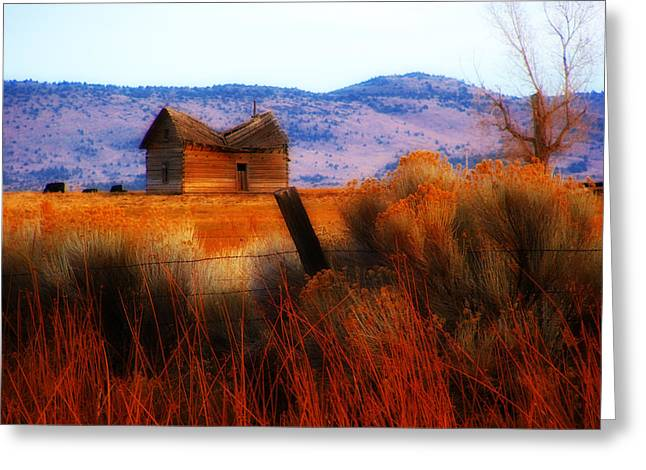 Hunting Cabin Greeting Cards - Willow Creek Homestead Greeting Card by Marcie  Adams