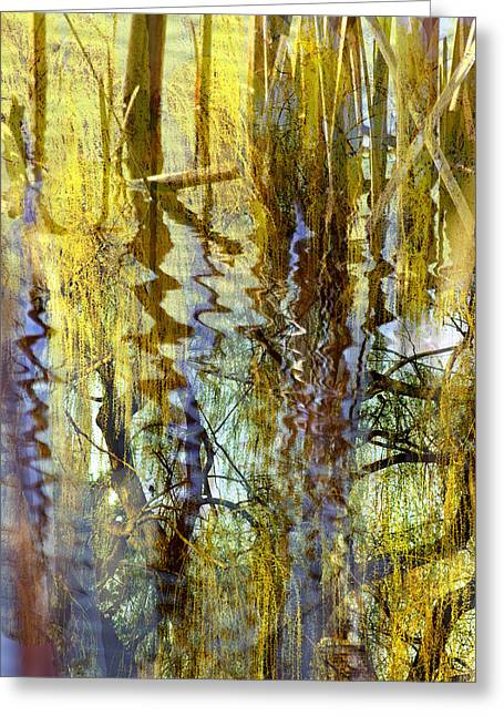 Landscape Posters Greeting Cards - Willow in Lake Greeting Card by Randi Scheurer