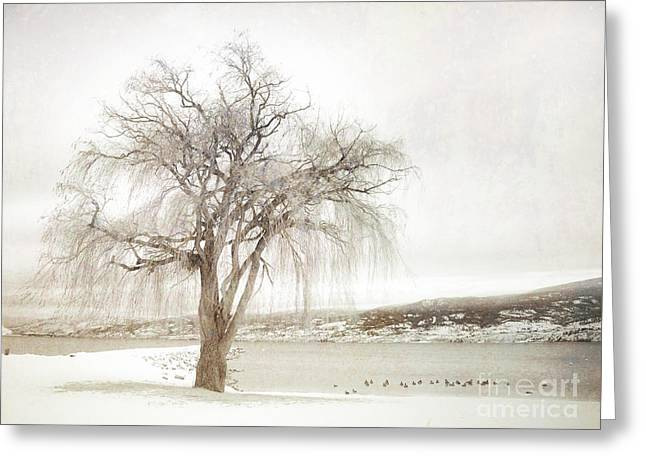 Willow Lake Greeting Cards - Willow Tree in Winter Greeting Card by Tara Turner