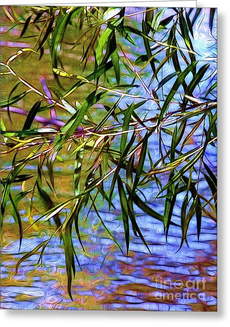 Dappled Light Greeting Cards - Willows at the Pond Greeting Card by Judi Bagwell