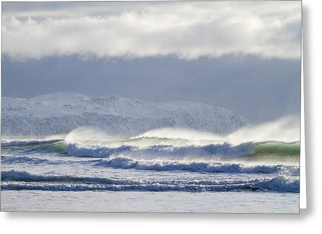 Kodiak Greeting Cards - Wind and Waves Greeting Card by Tim Grams