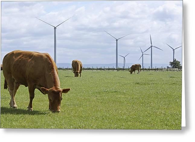 Greatest Generation Greeting Cards - Wind Farm, Cumbria, Uk Greeting Card by Mark Williamson