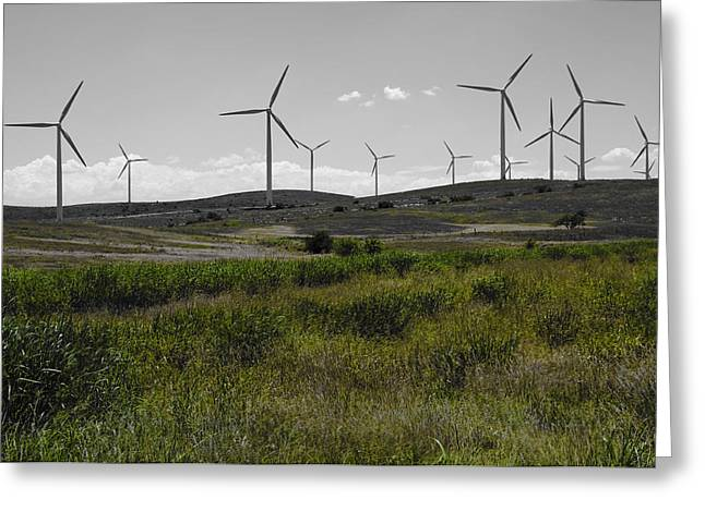 Ecologic Greeting Cards - Wind Farm IV Greeting Card by Ricky Barnard