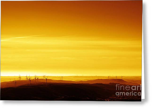 Rotate Greeting Cards - Wind Mills Greeting Card by Carlos Caetano