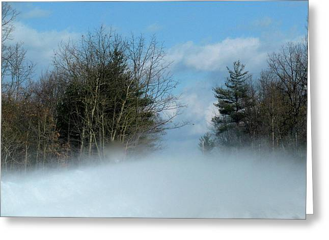 White As Snow Greeting Cards - Wind Rushs In Greeting Card by Debra     Vatalaro