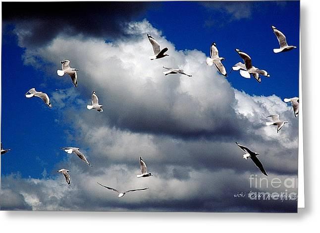 Grey Clouds Greeting Cards - Wind Sailing Seagulls Greeting Card by Vicki Ferrari
