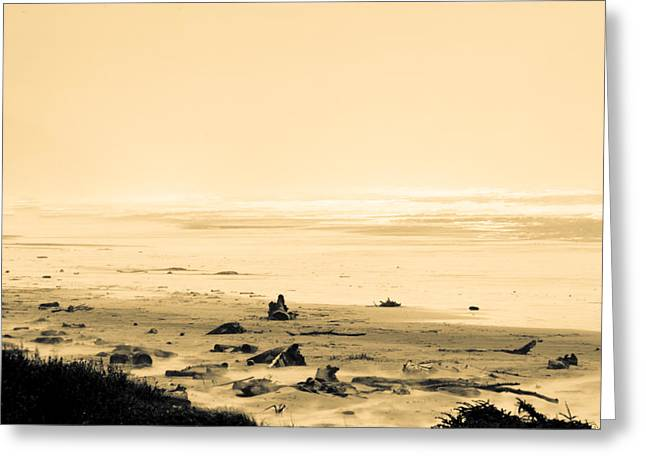 Manzanita Greeting Cards - Wind Storm On The Beach Greeting Card by Craig Perry-Ollila