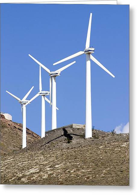 Wind Turbines, Lanzarote Greeting Card by Mark Williamson