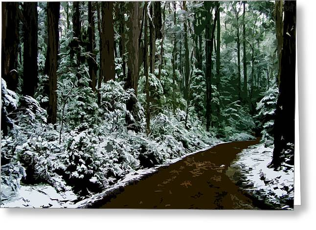 Roadway Digital Art Greeting Cards - Winding forest trail in winter snow Greeting Card by Phill Petrovic