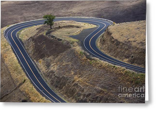 Destiny Greeting Cards - Winding Road Greeting Card by Idaho Scenic Images Linda Lantzy