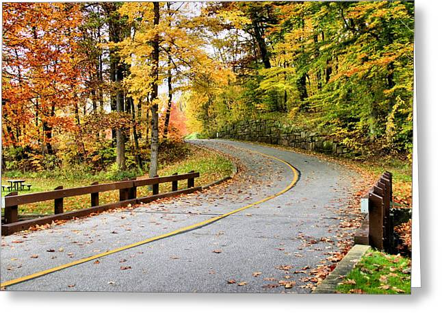 Akron Falls Greeting Cards - Winding Road Greeting Card by Kristin Elmquist