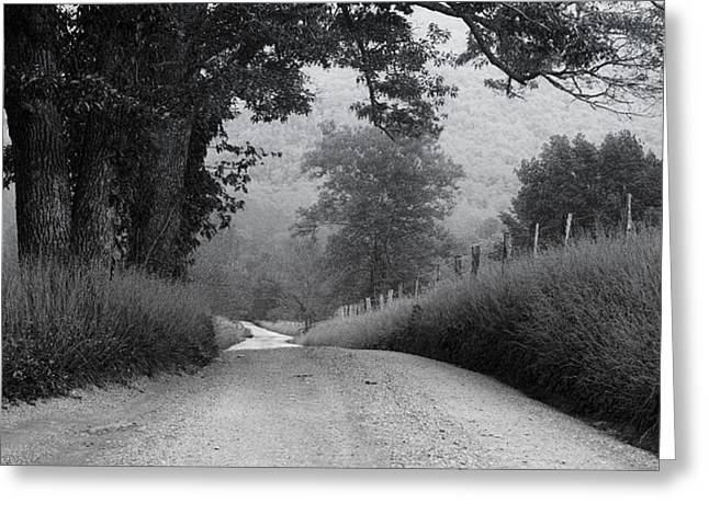 Smoky Greeting Cards - Winding Rural Road Greeting Card by Andrew Soundarajan