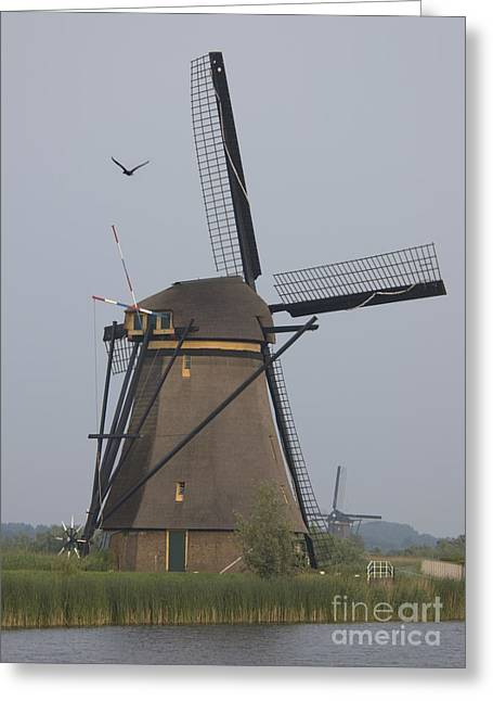 The Netherlands Greeting Cards - Windmills at Dusk Greeting Card by Andy Smy