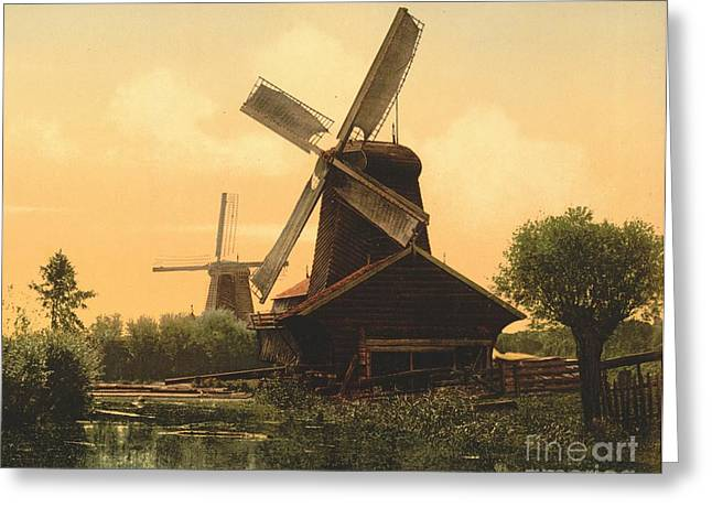 Windmills On The Noordendijk Greeting Card by Padre Art