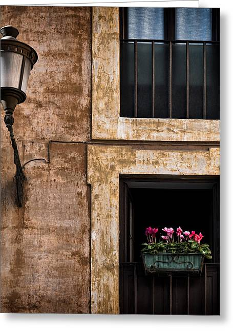 Rome Greeting Cards - Window Box Greeting Card by Dave Bowman