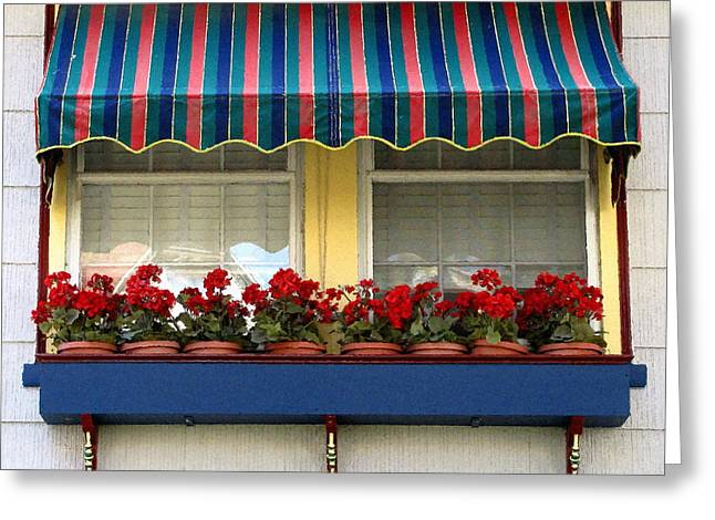 Original Art Photographs Greeting Cards - Window Box Geraniums Greeting Card by Colleen Kammerer