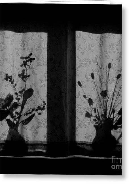 Lilli Greeting Cards - Window Shadow 2 Greeting Card by Aldo Cervato