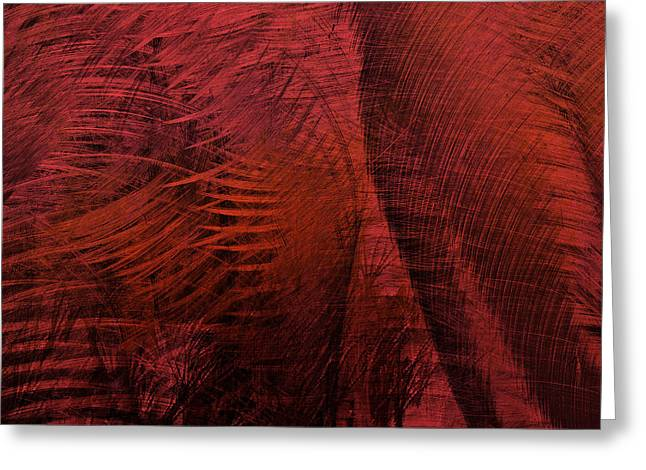 Edmonton Photographer Greeting Cards - Winds Of Sharp Ends Greeting Card by Jerry Cordeiro