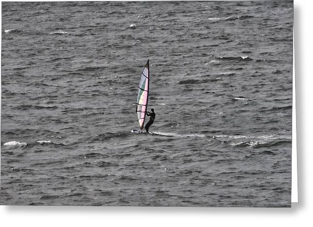Windsurfer Greeting Cards - Windsurfer  Greeting Card by Douglas Barnard