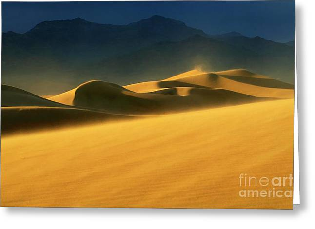 Mountains Of Sand Greeting Cards - Windswept 2 Greeting Card by Bob Christopher