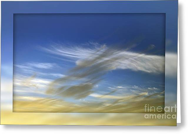 Wind Direction Greeting Cards - Windswept 2 Greeting Card by Kaye Menner