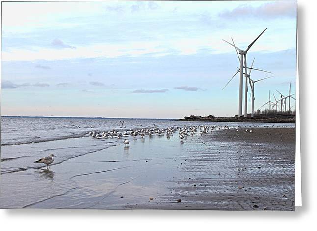 York Beach Greeting Cards - Windtalkers Greeting Card by Peter Chilelli