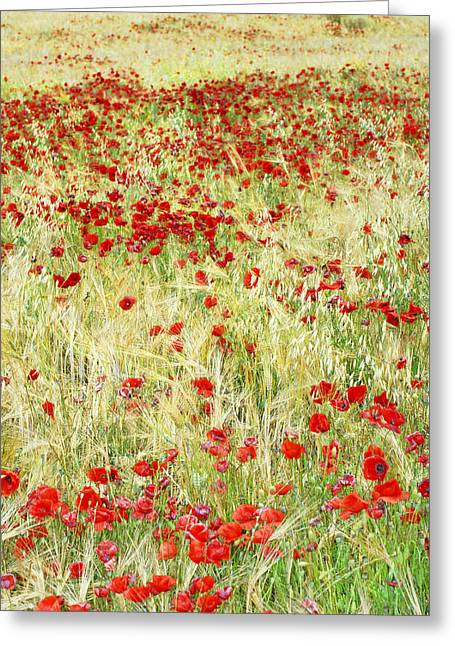 Lanscape Greeting Cards - Windy poppies Greeting Card by Guido Montanes Castillo