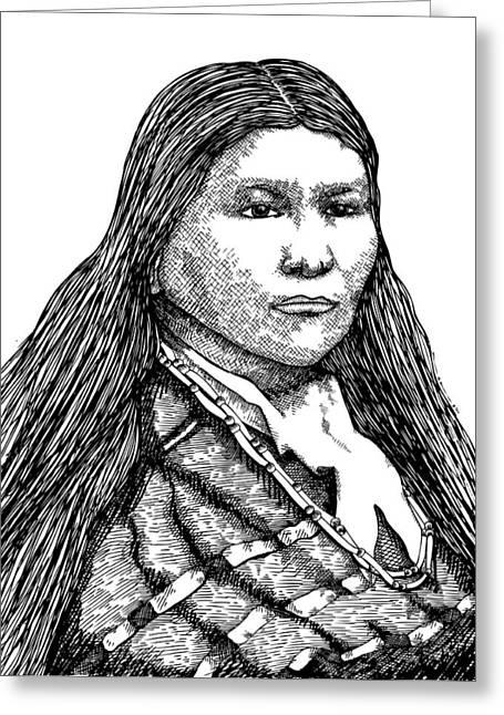 Black American Artist Drawings Greeting Cards - Winema Greeting Card by Karl Addison
