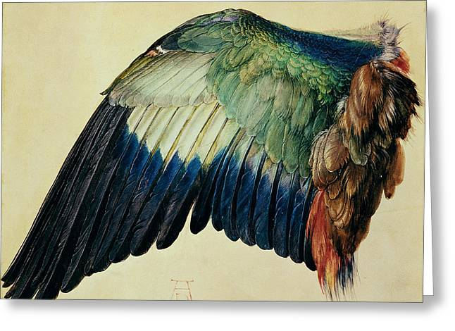 Winged Greeting Cards - Wing of a Blue Roller Greeting Card by Albrecht Durer